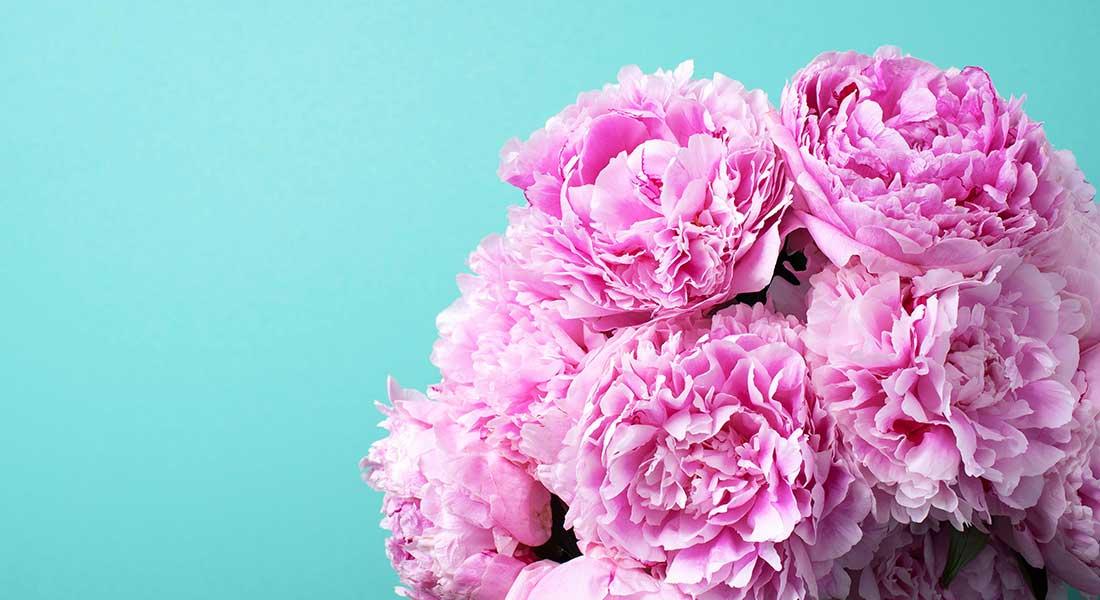 florarie-botosani-livrare-flori